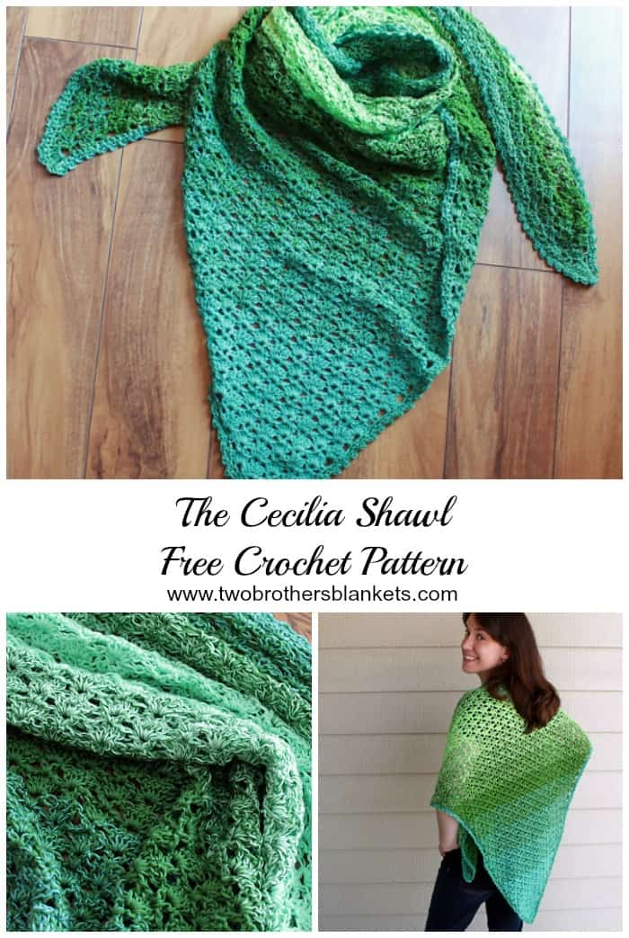 image about Free Printable Crochet Patterns named Cecilia Shawl- Free of charge Crochet Routine - 2 Brothers Blankets
