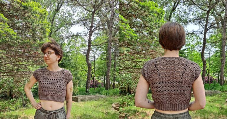 Free Crochet Crop Top Pattern- Tuesday Top